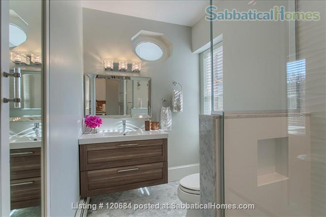 Stunning, renovated 1-bedroom apartment in the heart of Brookline Home Rental in Brookline, Massachusetts, United States 5