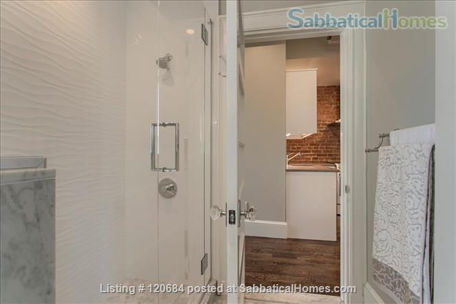 Stunning, renovated 1-bedroom apartment in the heart of Brookline Home Rental in Brookline, Massachusetts, United States 6