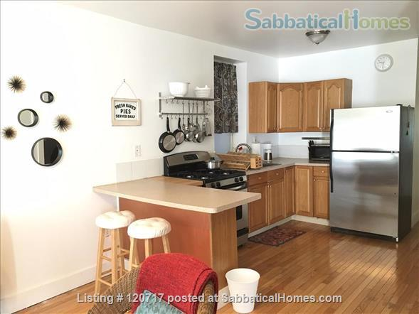 Cute and Cozy One Bedroom in the heart of Pilsen Home Rental in Chicago, Illinois, United States 2