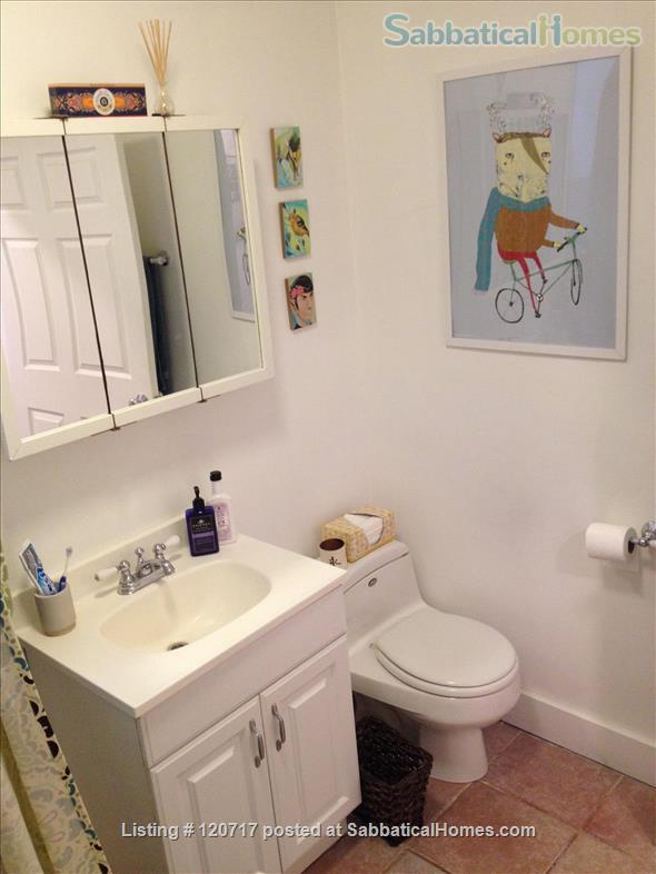 Cute and Cozy One Bedroom in the heart of Pilsen Home Rental in Chicago, Illinois, United States 7