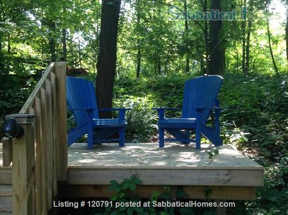 A nature lover's home within a home! Home Rental in Ann Arbor, Michigan, United States 0