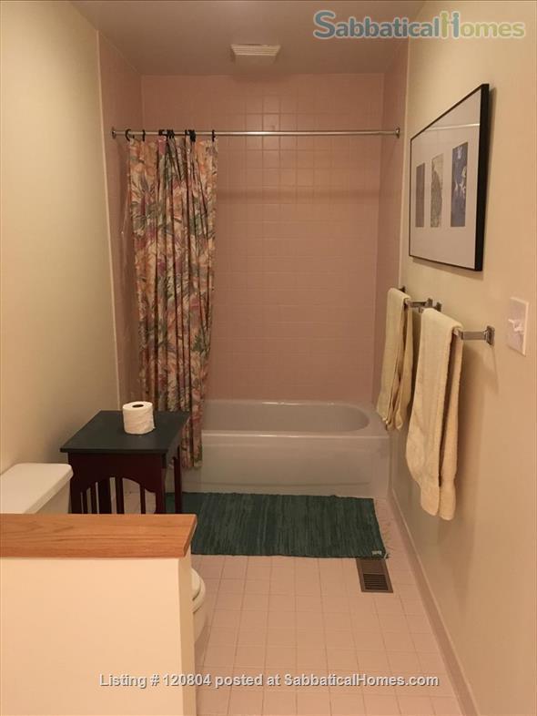 Beautiful modern home in Mt. Washington, Baltimore. Home Rental in Baltimore, Maryland, United States 5