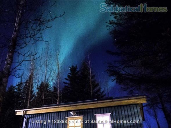 Backyard Village - Turquoise or Blue House Home Rental in Hveragerði, , Iceland 8
