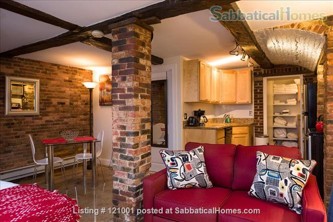 COZY FURNISHED STUDIO  (M113)    1 dog is welcome Home Rental in Boston, Massachusetts, United States 0