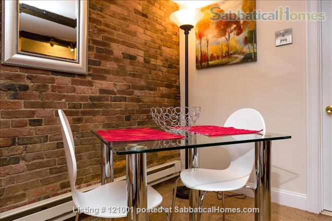 COZY FURNISHED STUDIO  (M113)    1 dog is welcome Home Rental in Boston, Massachusetts, United States 2