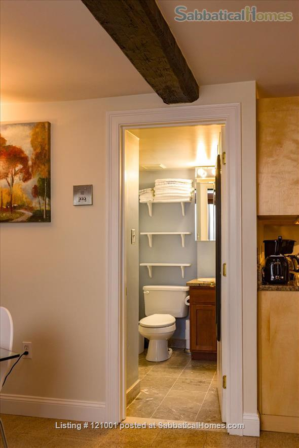 COZY FURNISHED STUDIO  (M113)    1 dog is welcome Home Rental in Boston, Massachusetts, United States 7