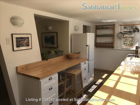 Ravensnest Bungalow - Sun-Filled English Basement Home Rental in Takoma Park, Maryland, United States 0