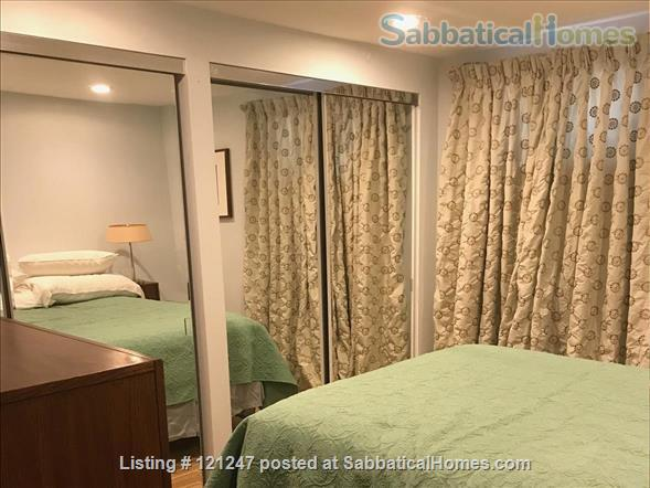 Ravensnest Bungalow - Sun-Filled English Basement Home Rental in Takoma Park, Maryland, United States 7