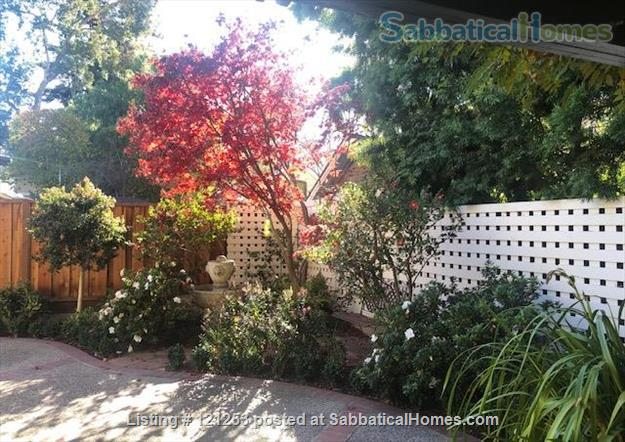 Exceptional Apartment. Fully Furnished 2 Bd 1.5 Ba + Office. Downtown North Home Rental in Palo Alto, California, United States 9