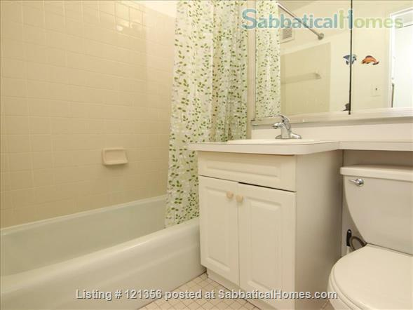 West Greenwich Village Apartment close to Hudson River Promenade Home Rental in New York, New York, United States 6