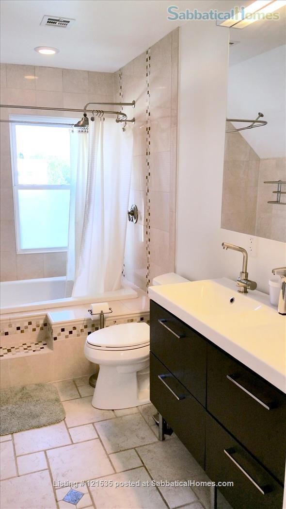 $3690 / 2br - 900ft2 - Furn. Nr Harvard, market, w Open-plan on TopF! w UTILITIES. Home Rental in Somerville, Massachusetts, United States 6