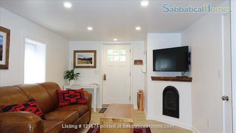 Furnished 1BR 1BA on T, Central Sq. between MIT & Harvard Home Rental in Cambridge, Massachusetts, United States 1