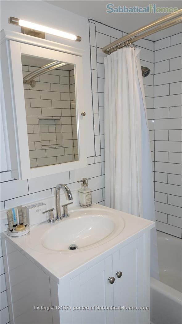 Furnished 1BR 1BA on T, Central Sq. between MIT & Harvard Home Rental in Cambridge, Massachusetts, United States 8