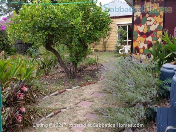 Peaceful house and garden near Monash, CSIRO, Synchotron Home Rental in Caulfield South, VIC, Australia 3