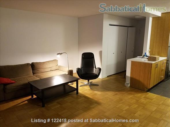 Spacious 1 Bedroom Apartment by NYU Home Rental in New York, New York, United States 0
