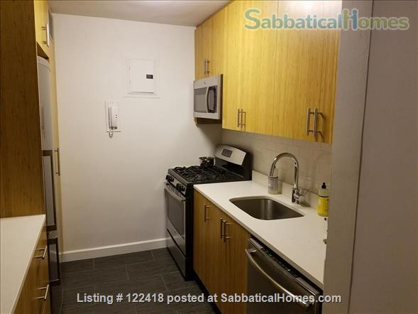 Spacious 1 Bedroom Apartment by NYU Home Rental in New York, New York, United States 2