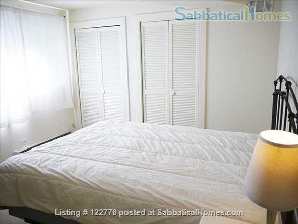 Life in the Bamboo Garden Home Rental in Berkeley, California, United States 9