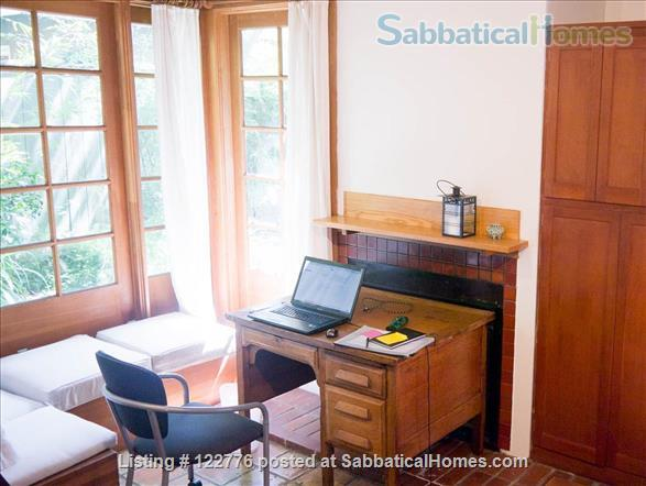 Life in the Bamboo Garden Home Rental in Berkeley, California, United States 5