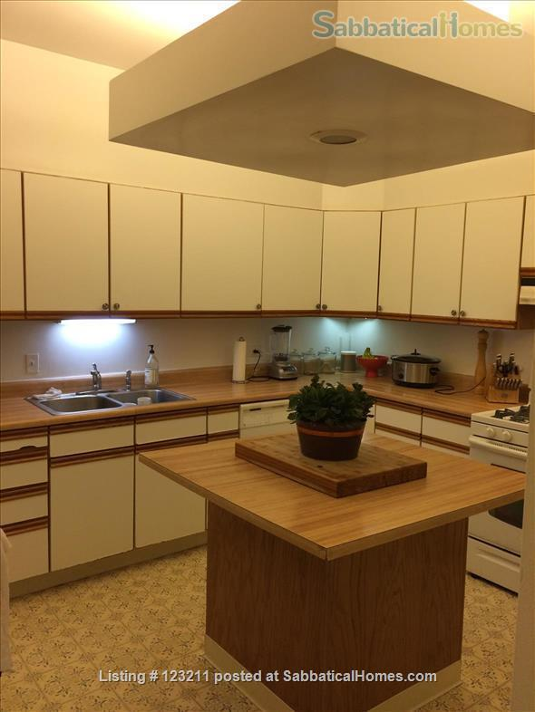 Gorgeous Lincoln Park Apartment. Walk to Lakefront, Shopping,Restaurants. All Wood Floors Home Rental in Chicago, Illinois, United States 4