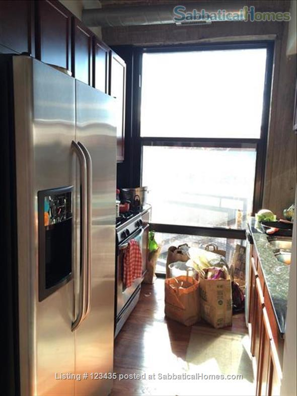 Fully furnished 2 bedroom condo near U Illinois at Chicago Home Rental in Chicago, Illinois, United States 4