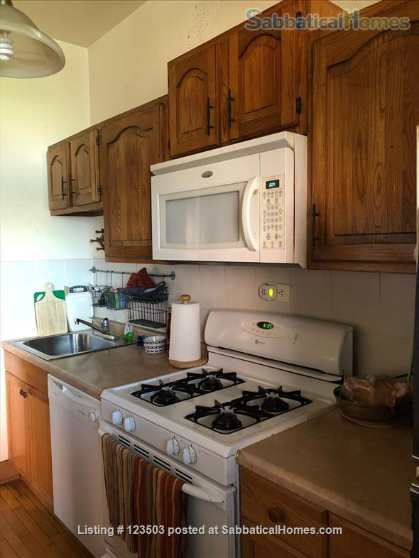 Beautiful furnished 2.5 bedroom apartment near University of Chicago Home Rental in Chicago, Illinois, United States 0