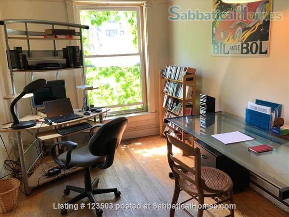 Beautiful furnished 2.5 bedroom apartment near University of Chicago Home Rental in Chicago, Illinois, United States 7