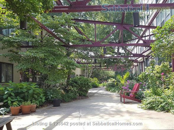 Spacious bright penthouse level artist loft for rent Union Square near MIT Home Rental in Somerville, Massachusetts, United States 8