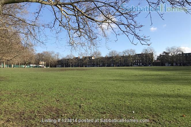 Spacious, quiet 1-bed flat (75 sqm) in Highbury/Islington, opposite a park Home Rental in Greater London, England, United Kingdom 8