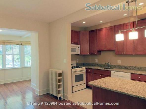For Rent: Beautiful Townhome or Room in Burleith/Glover Park Home Rental in Washington, District of Columbia, United States 1