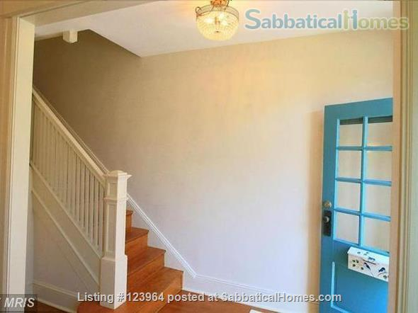For Rent: Beautiful Townhome or Room in Burleith/Glover Park Home Rental in Washington, District of Columbia, United States 5