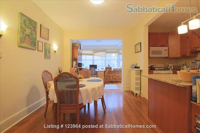 For Rent: Beautiful Townhome or Room in Burleith/Glover Park Home Rental in Washington, District of Columbia, United States 8