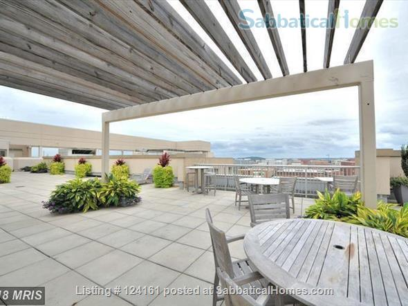 Newly furnished loft 1BR in downtown Washington DC!  Home Rental in Washington, District of Columbia, United States 8