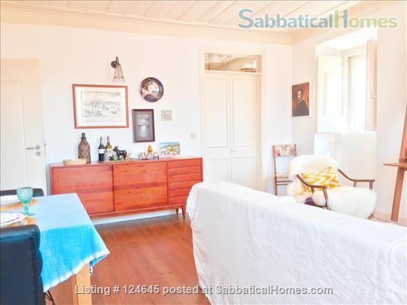 Sunny one-bedroom apartment in central Lisbon Home Exchange in Lisboa, Lisboa, Portugal 9