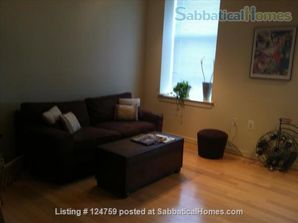 Furnished 2BR/2BR condo in Baltimore City's Canton neighborhood Home Rental in Baltimore, Maryland, United States 8