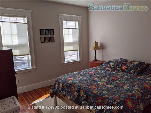 Sunny apt with bedroom and office near Tufts, Harvard, & MIT - Util included Home Rental in Arlington, Massachusetts, United States 4