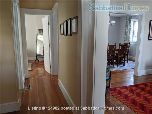 Sunny apt with bedroom and office near Tufts, Harvard, & MIT - Util included Home Rental in Arlington, Massachusetts, United States 7