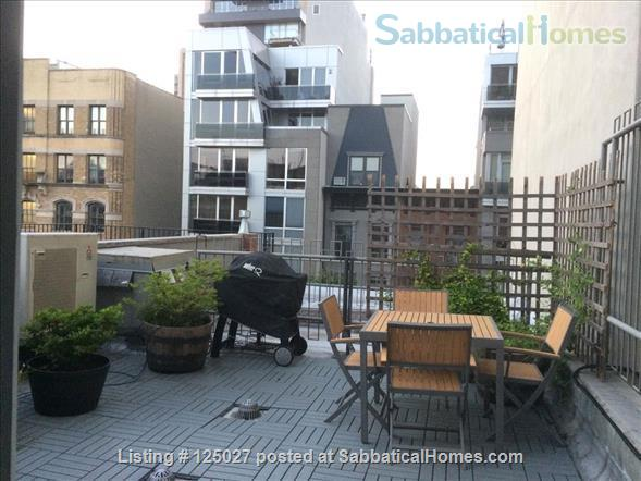 Sunny Floor-Through Duplex with Private Roof Deck August 2021 Home Rental in New York, New York, United States 8
