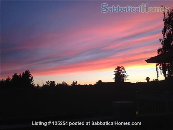 Bright, clean 2BR 1BA apt in top Santa Cruz Seabright location, avail around 6/1/2022 Home Rental in Santa Cruz, California, United States 6