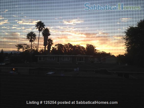 Bright, clean 2BR 1BA apt in top Santa Cruz Seabright location, avail around 6/1/2022 Home Rental in Santa Cruz, California, United States 7
