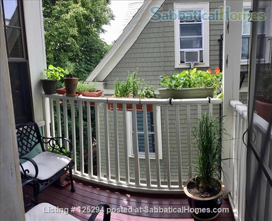 Cambridge Agassiz 3-Decker Top Floor -- Perfect Location / Fully Furnished Home Rental in Cambridge, Massachusetts, United States 9