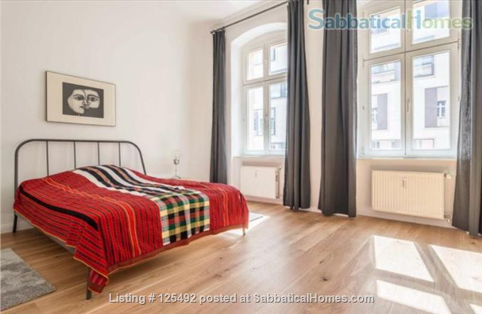 Spacious fully-furnished apartment in the heart of Berlin (Mitte) Home Rental in Berlin, Berlin, Germany 6