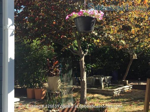 Beautiful and safe: furnished cottage near Rockridge BART and everything Home Rental in Oakland, California, United States 6