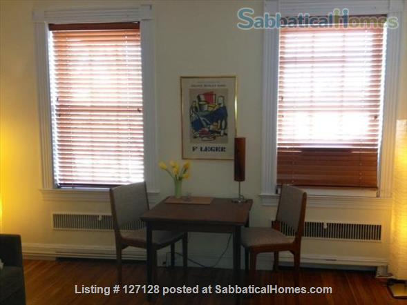 Charming Harvard Square Studio Home Rental in Cambridge, Massachusetts, United States 5