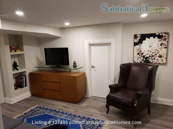 Beautifully Bright  - New  One Bedroom Apartment  Home Rental in Toronto, Ontario, Canada 6