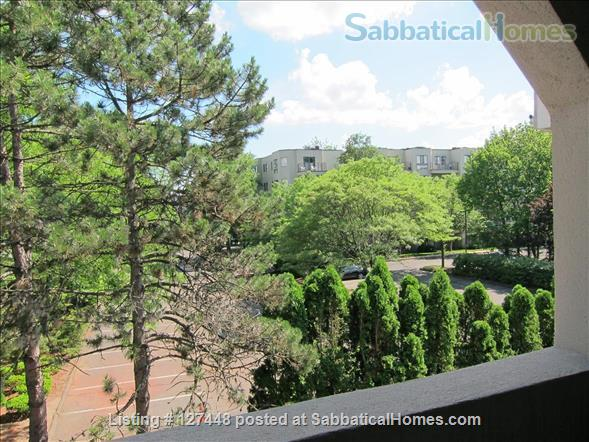Spacious & comfortable one-bedroom condo. Fully Furnished. Minutes to Yale. Home Rental in Hamden, Connecticut, United States 0