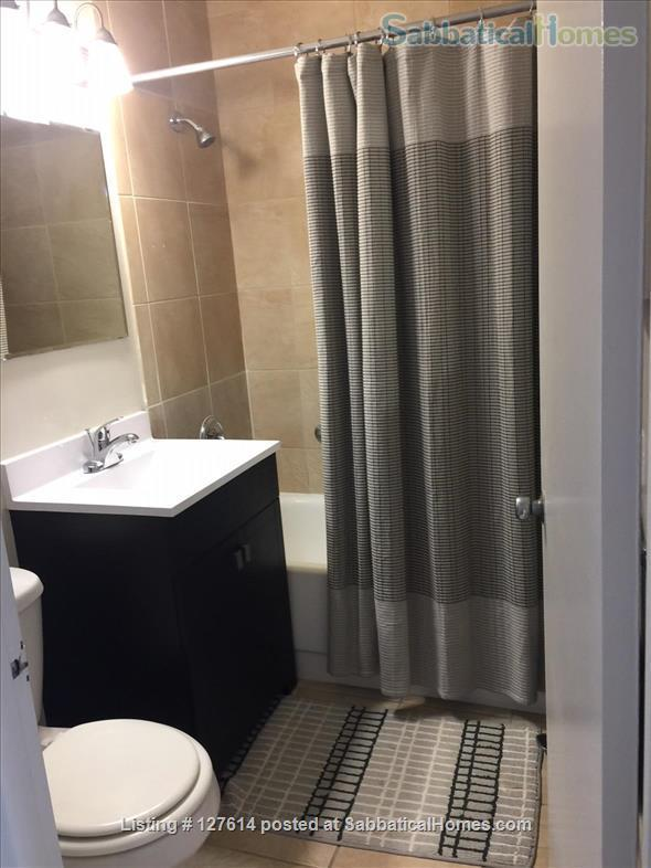 Fully Furnished - 1 bed in Chicago's  Gold Coast -  close to everything!! Home Rental in Chicago, Illinois, United States 3