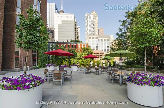 Fully Furnished - 1 bed in Chicago's  Gold Coast -  close to everything!! Home Rental in Chicago, Illinois, United States 7