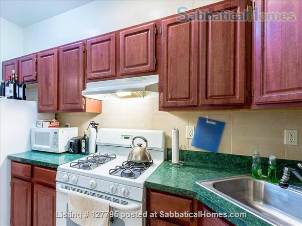 Strivers Row Sanctuary in Harlem  Home Rental in New York, New York, United States 5