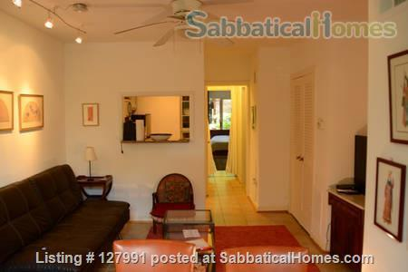 Spacious apartment close to Eastern Market Home Rental in Washington, District of Columbia, United States 4