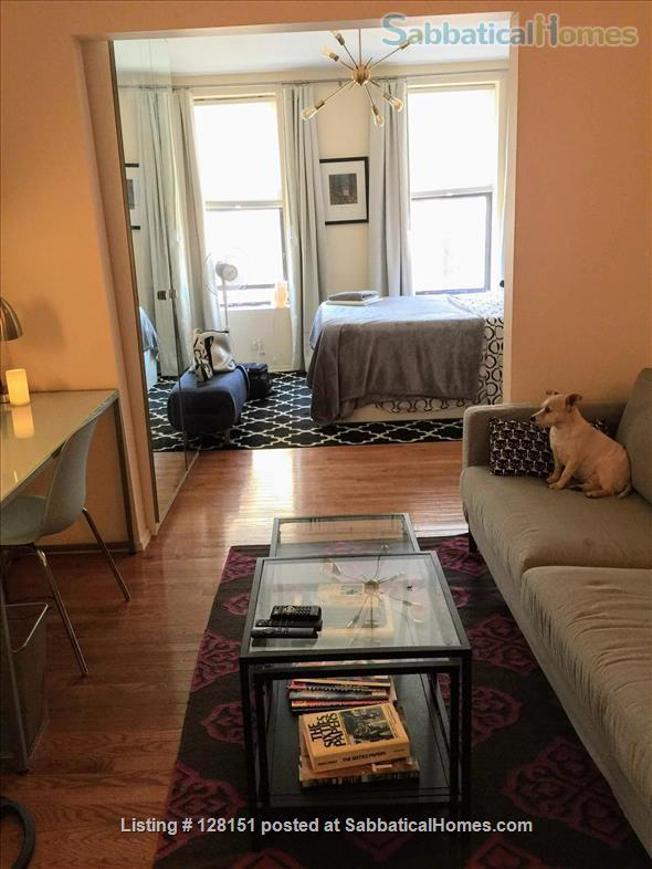 Available NOW! Pet Friendly - Entire one bedroom apartment beside Columbia Home Rental in New York, New York, United States 1